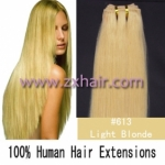 "20"" remy Human Hair Weft/Extensions 50"" Wide #613"