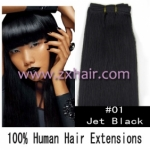 "20"" remy Human Hair Weft/Extensions 50"" Wide #01"